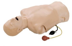 deluxe-difficult-airway-management-trainer